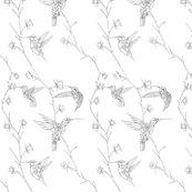 Rrhummingbirds_redone_shop_thumb