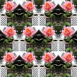 Trellised Pink Roses - half brick repeat