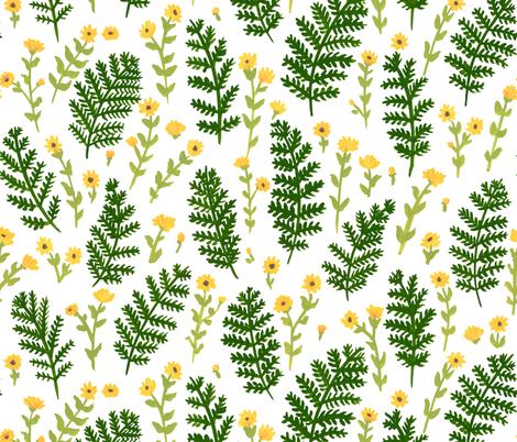 Ferns & Flowers fabric by mayabeeillustrations on Spoonflower - custom fabric
