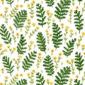 Rferns_yellow_flowers_original_image_shop_thumb