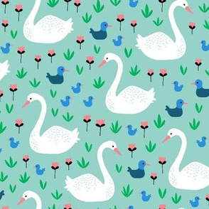 Swans and ducks swimming pond on mint