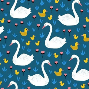 Swans and ducks swimming pond on navy
