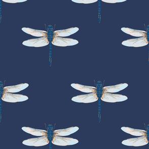 Firefly Navy