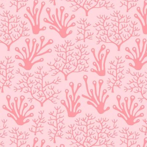 Coral reef soft pink