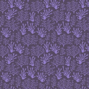Coral reef purple (small)