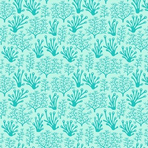 Coral reef turquoise (small)