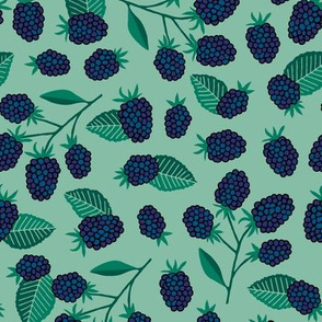 Blackberries fruit on mint