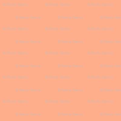 Orange Solid for Eyes