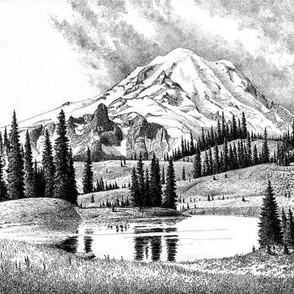 mount rainier 1- washington - toile
