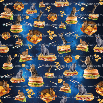 Space cat fabric christinadeth spoonflower for Space kitty fabric