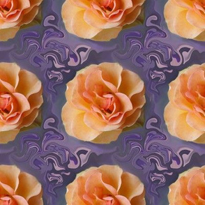 Apricot Roses on Lavender Swirls