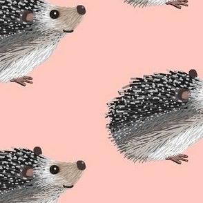 Pokey Little Hedgehog