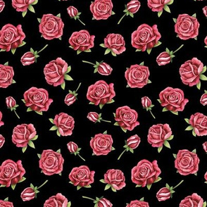 Red roses on black background small