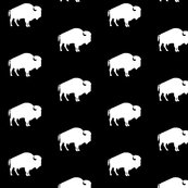 Rrwhite_buffalo_on_black_shop_thumb