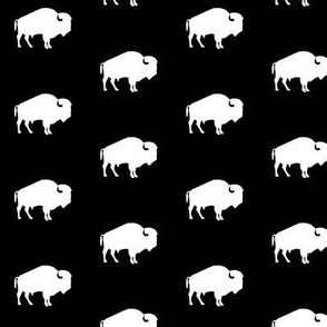 white buffalo on black
