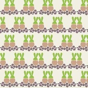 Love Bunny_Succulents