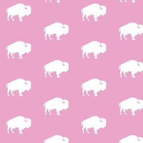 white buffalo on pink