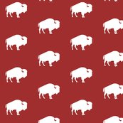 Rrrrwhite_buffalo_on_red_shop_thumb