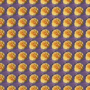 Yellow Roses on Purple Swirls, Small