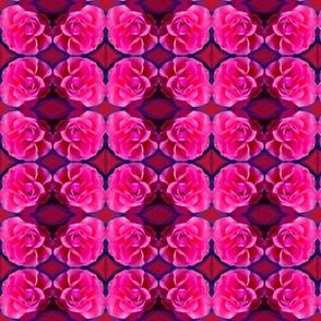 Pink Roses  Clusters Circling Magenta  Diamonds