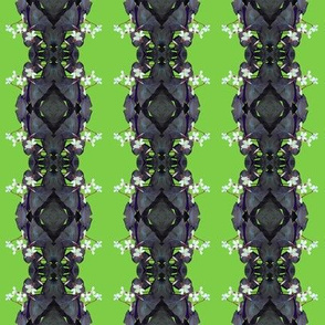 Oxalis Stripes - dark purplish grey on lime