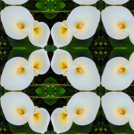 peace lily 1 fabric by shaunaroberts on Spoonflower - custom fabric