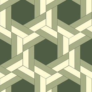Green Bayeux Braided Hexagons