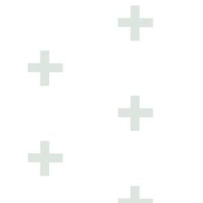 Large Cross- sage on white