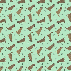 Tiny Dutch Shepherds - green