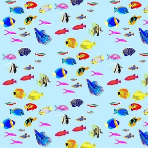 Tropical Fish Frenzy - Large