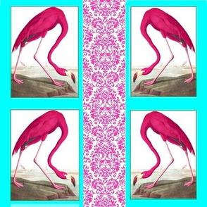 Flamingos_Pink
