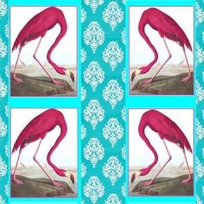 Flamingos_Turquoise
