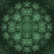 1. NOC - Succulent