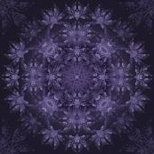 4. NOC - Lavender
