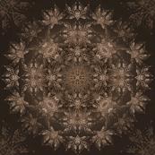 6. NOC - Earth
