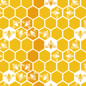 Honey comb and Honey bees