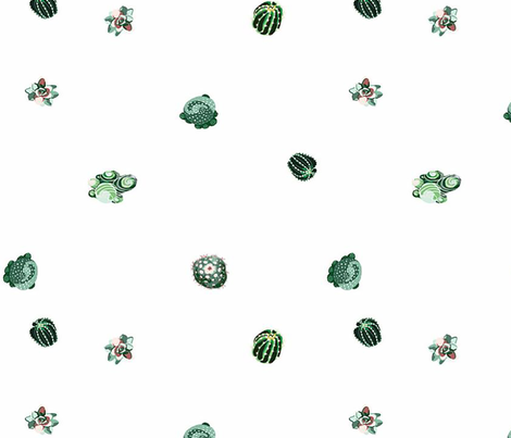 Succulents fabric by squilliam on Spoonflower - custom fabric