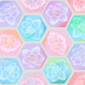Spring hexagons