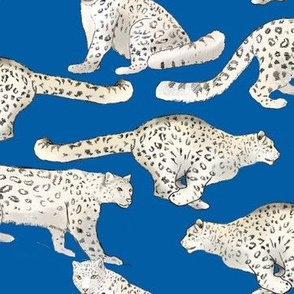 Snow Leopards on Blue