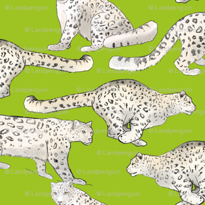 Snow Leopards on Lime Green