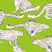 Rsnow_leopards_on_lime_green_shop_thumb