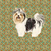 Rrbiewer_terrier_for_pillow_rev_shop_thumb