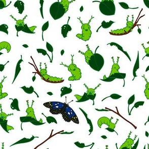 Cuteapillars