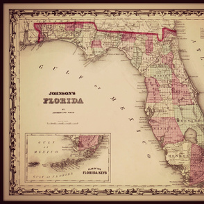 Florida map, large