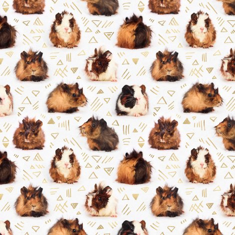 Rr4861065_rguinea_pig_pattern_base_small_shop_preview