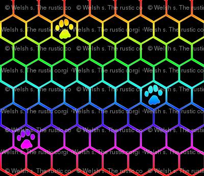 Feline paw prints on hexagons - rainbow cat paws