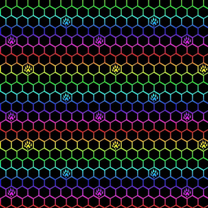 Ferret tracks on hexagons - rainbow