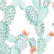 Aqua-paddle-cactus_shop_thumb