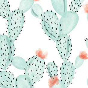 aqua paddle cactus + rose // oversized