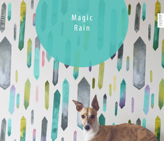 Rfriztin_magic_rain__comment_767464_thumb